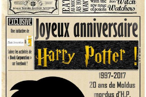Harry Potter Joyeux Anniversaire Harry Potter Bibliotheque